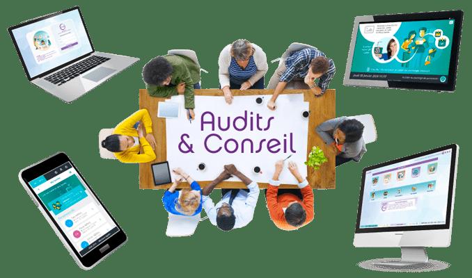 Visuel des services d'audit et conseil Noé et iNoé